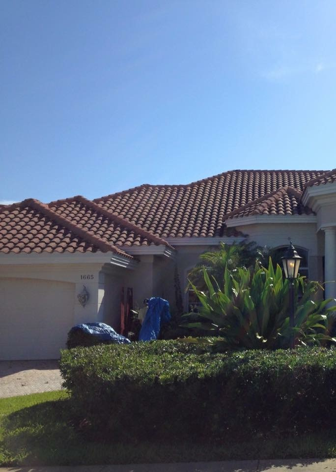 Exterior Attack Pressure Washing Cleaning Brevard